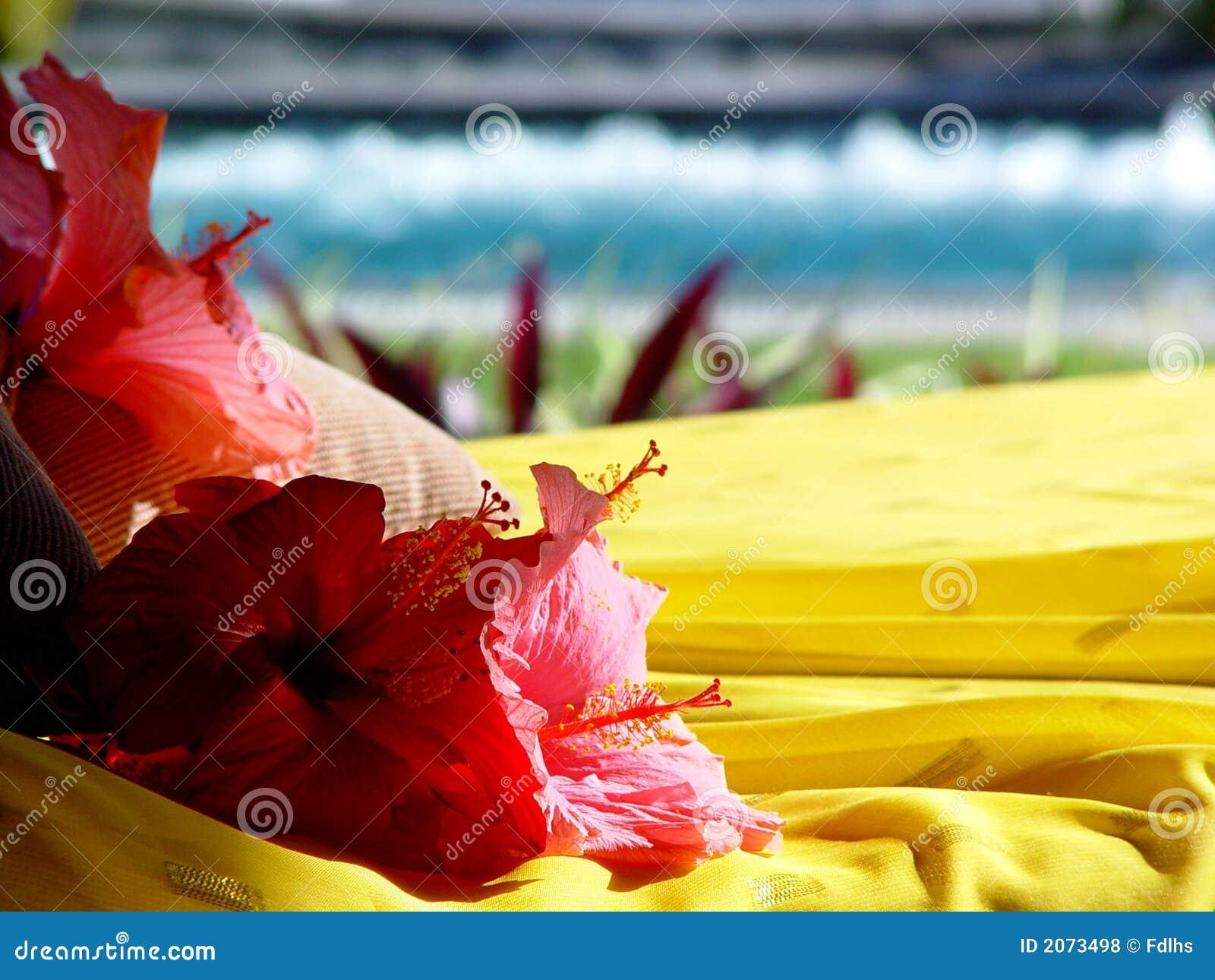 курорт Маврикия hibiscus