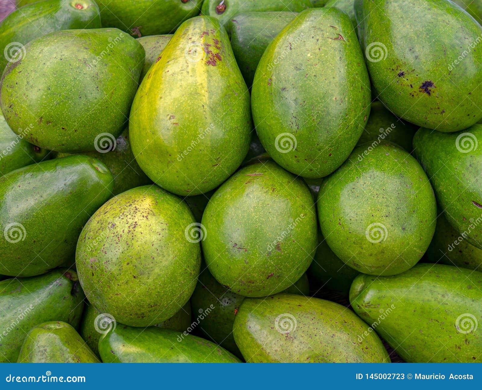 Куча авокадоов в рынке