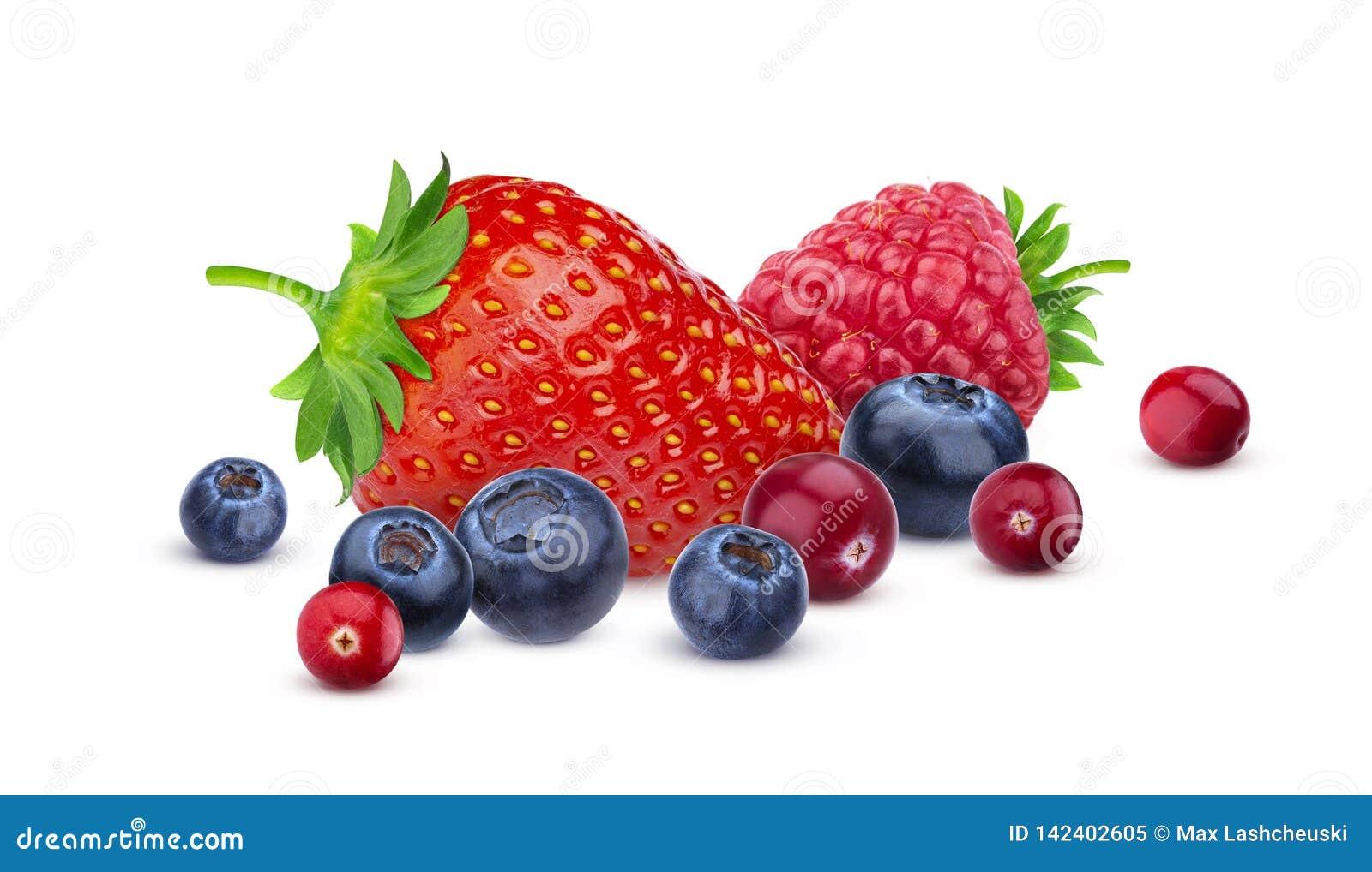 Куча различных диких ягод изолированных на белой предпосылке с путем клиппирования Различный тип плодов ягоды, собрание