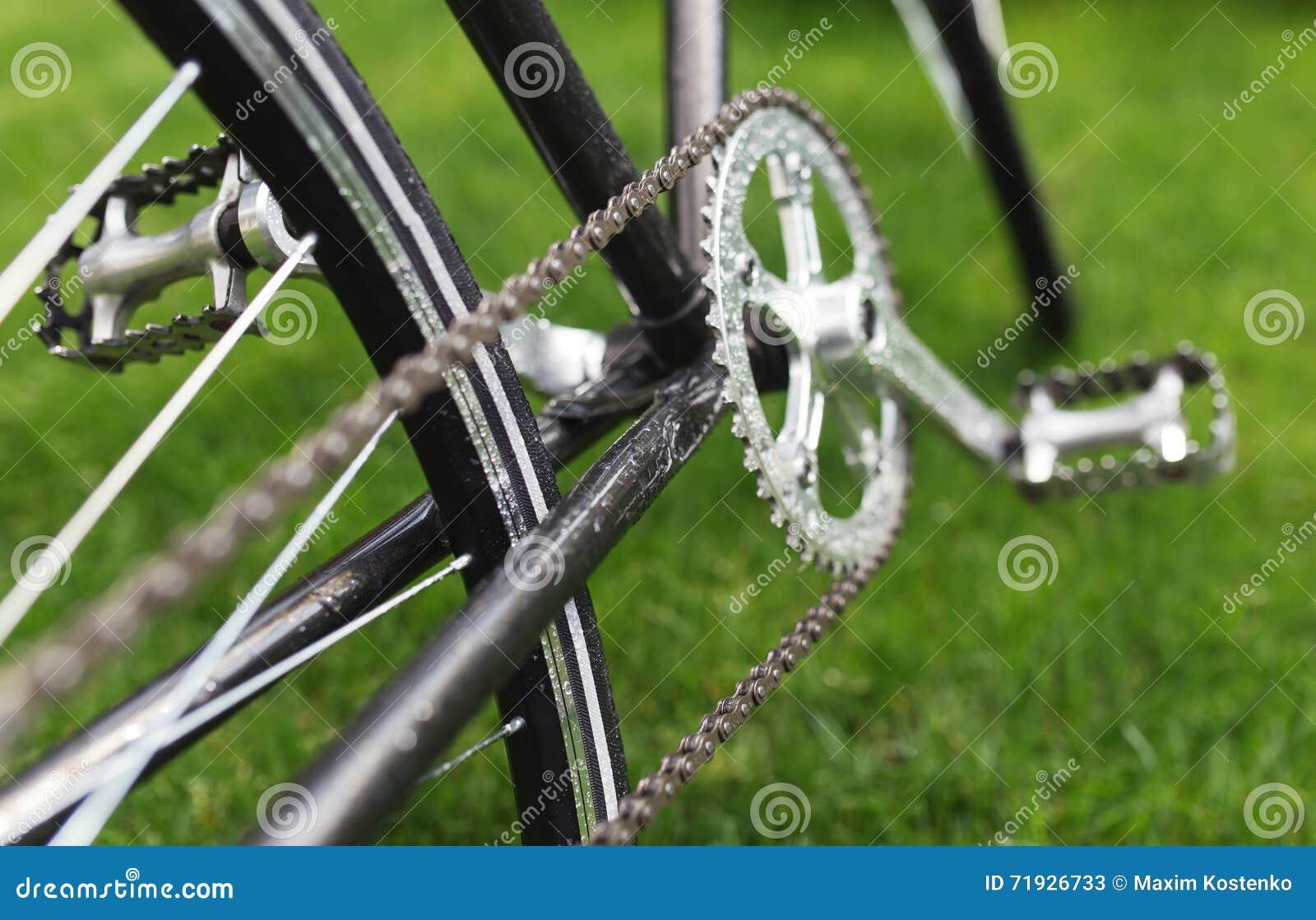 Классическое фото конца-вверх велосипеда дороги в поле луга зеленой травы лета предпосылка больше моего перемещения портфолио