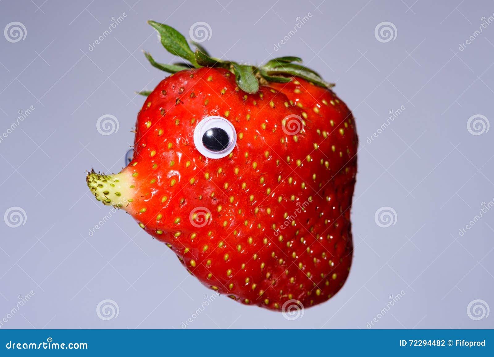 Download Клубника с естественным, который выросли носом любит сторона Стоковое Фото - изображение насчитывающей природа, одиночно: 72294482