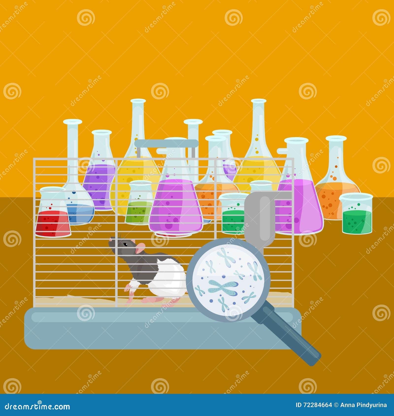 Download Лабораторное оборудование исследования образования химии, стеклянная лампа научной лаборатории, вектор Иллюстрация вектора - иллюстрации насчитывающей лаборатория, фармацевтическо: 72284664