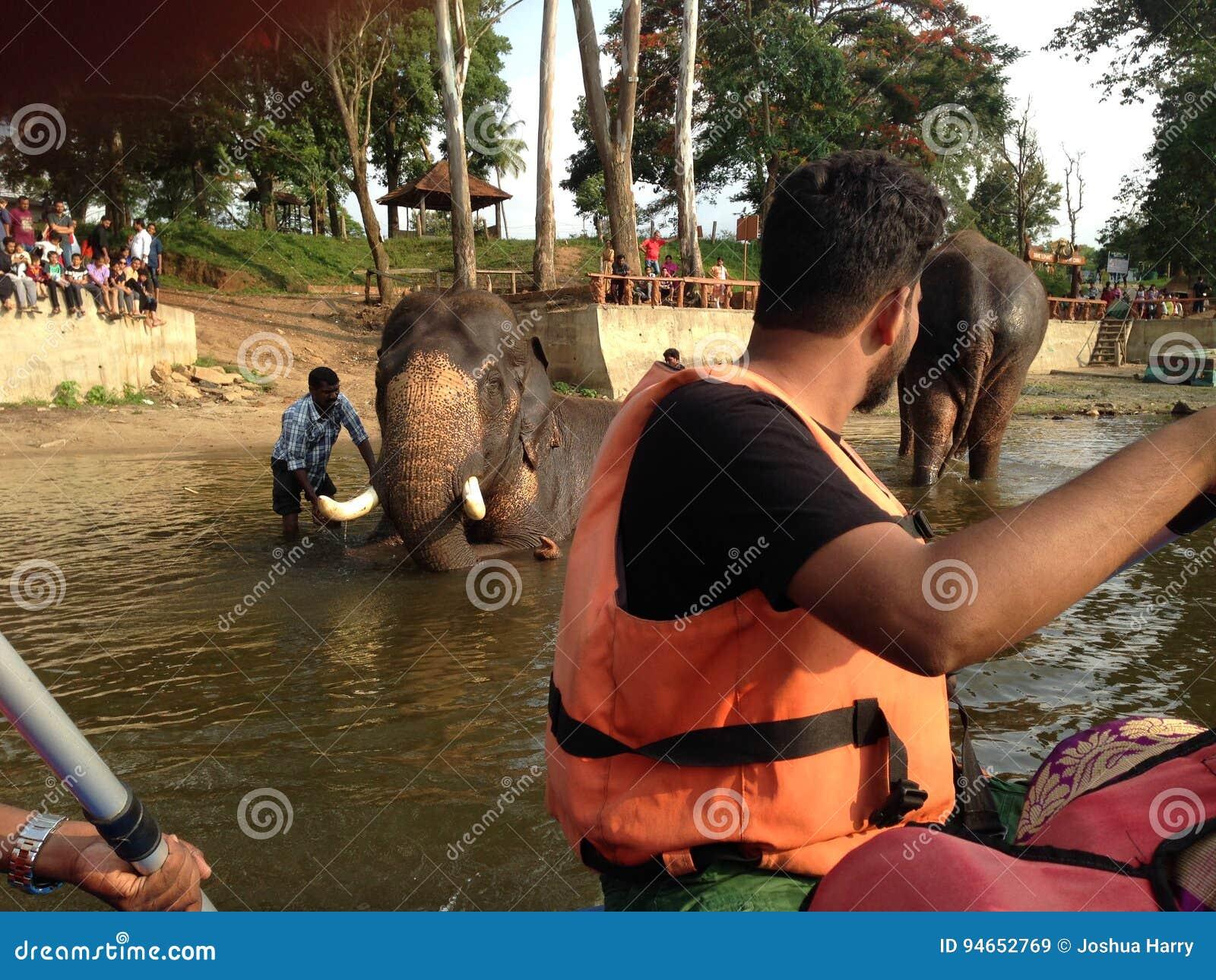 Лагерь слона