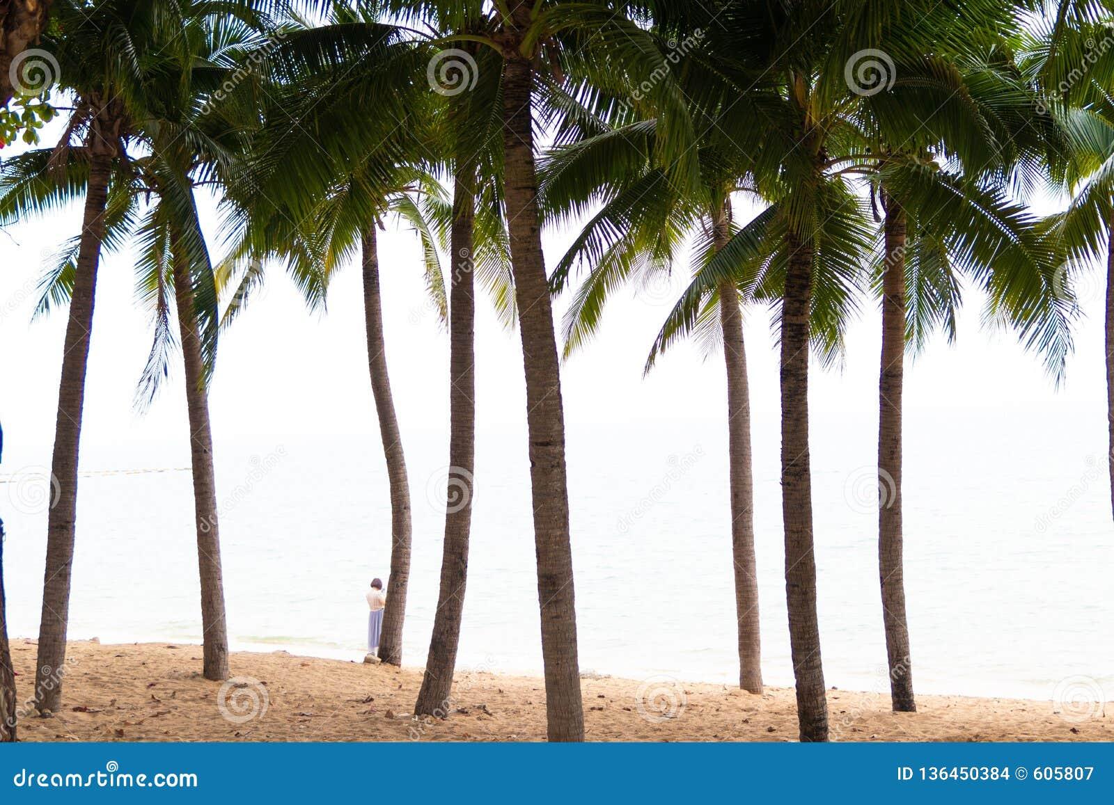 Ладони кокоса и старый красный прогулочный катер на белом песчаном пляже Рыбацкие лодки на пляже с пальмами