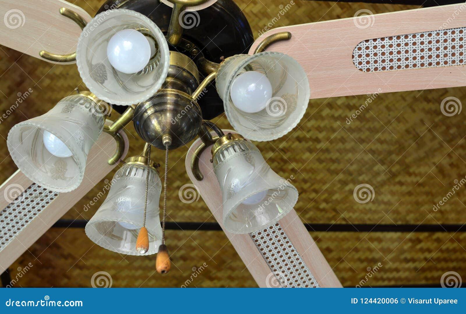 Лампы и потолочные вентиляторы на моей живущей комнате