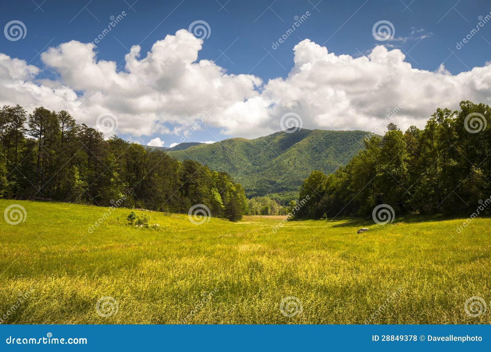 Ландшафт весны национального парка закоптелых гор бухточки Cades большой сценарный