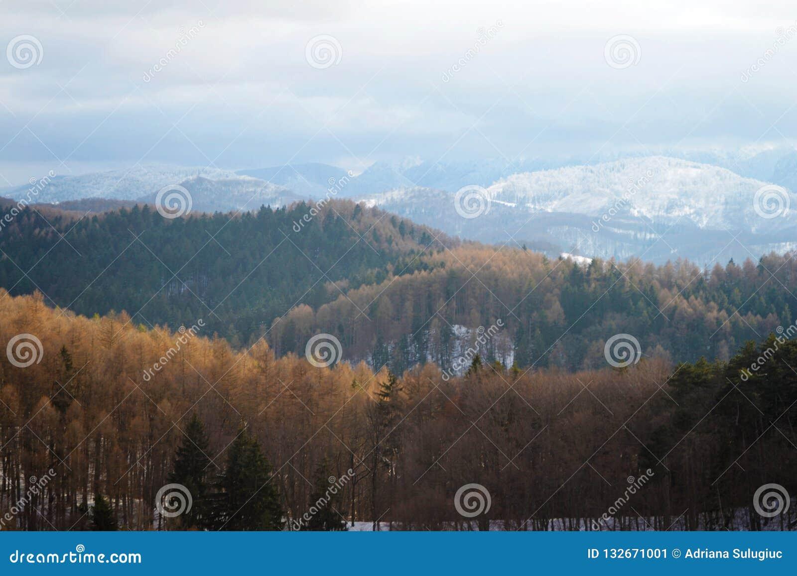 Ландшафт гор Bucegi