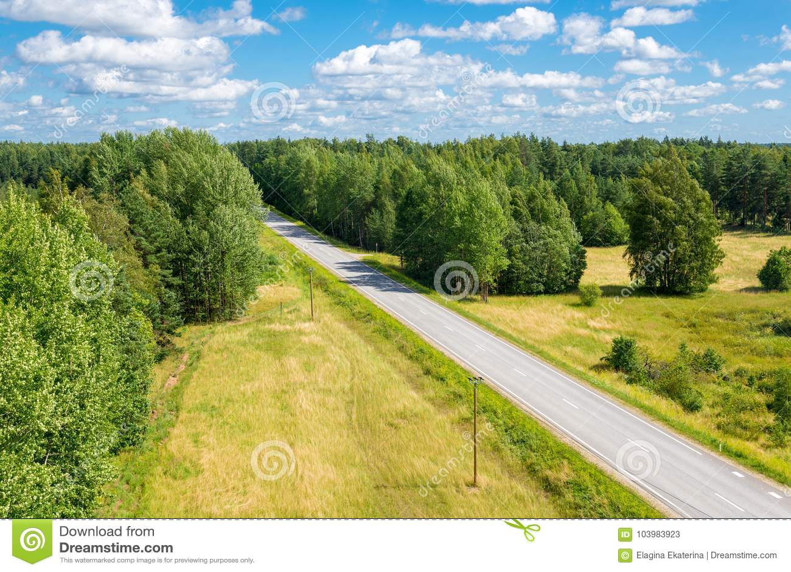 Ландшафт лета с дорогой среди взгляд сверху леса