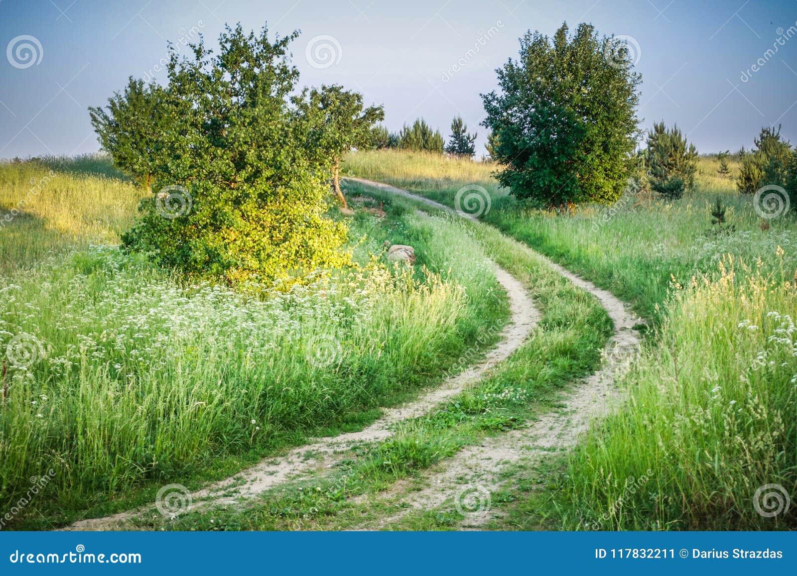 Ландшафт луга и дороги