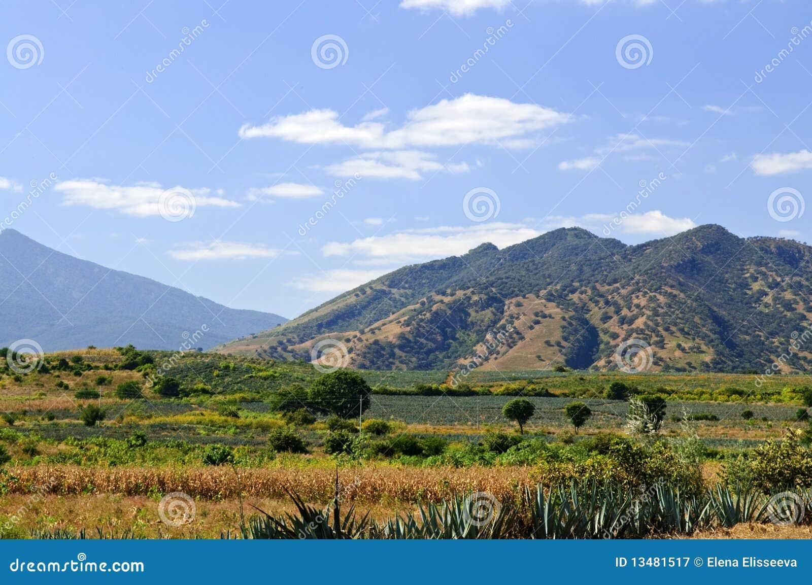 ландшафт Мексика jalisco