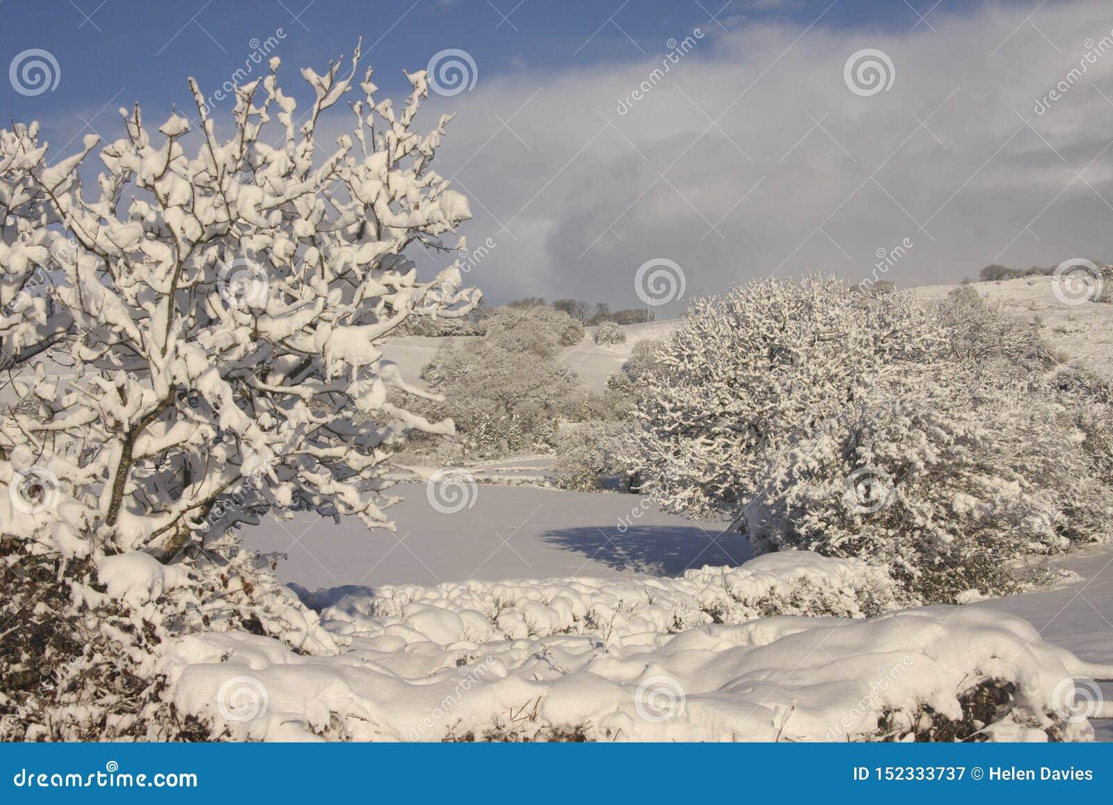 Ландшафт снега зимы, Кардифф, Великобритания