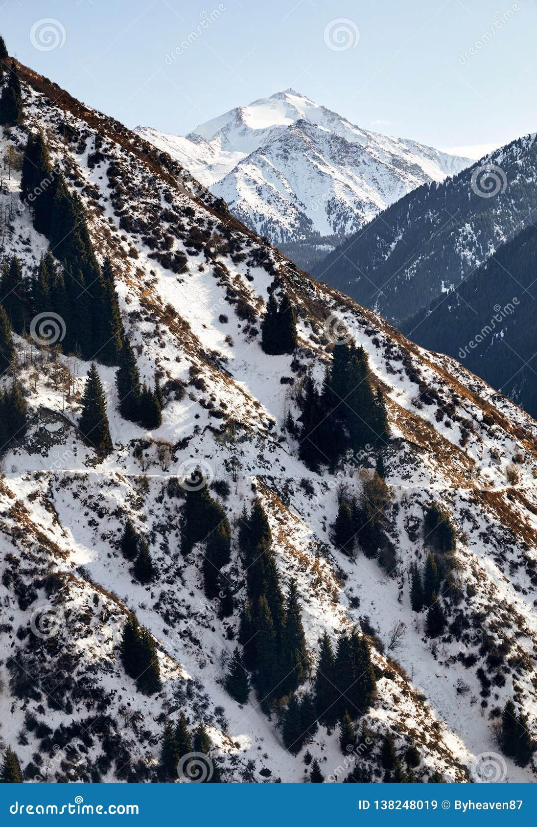 Ландшафт снежных гор