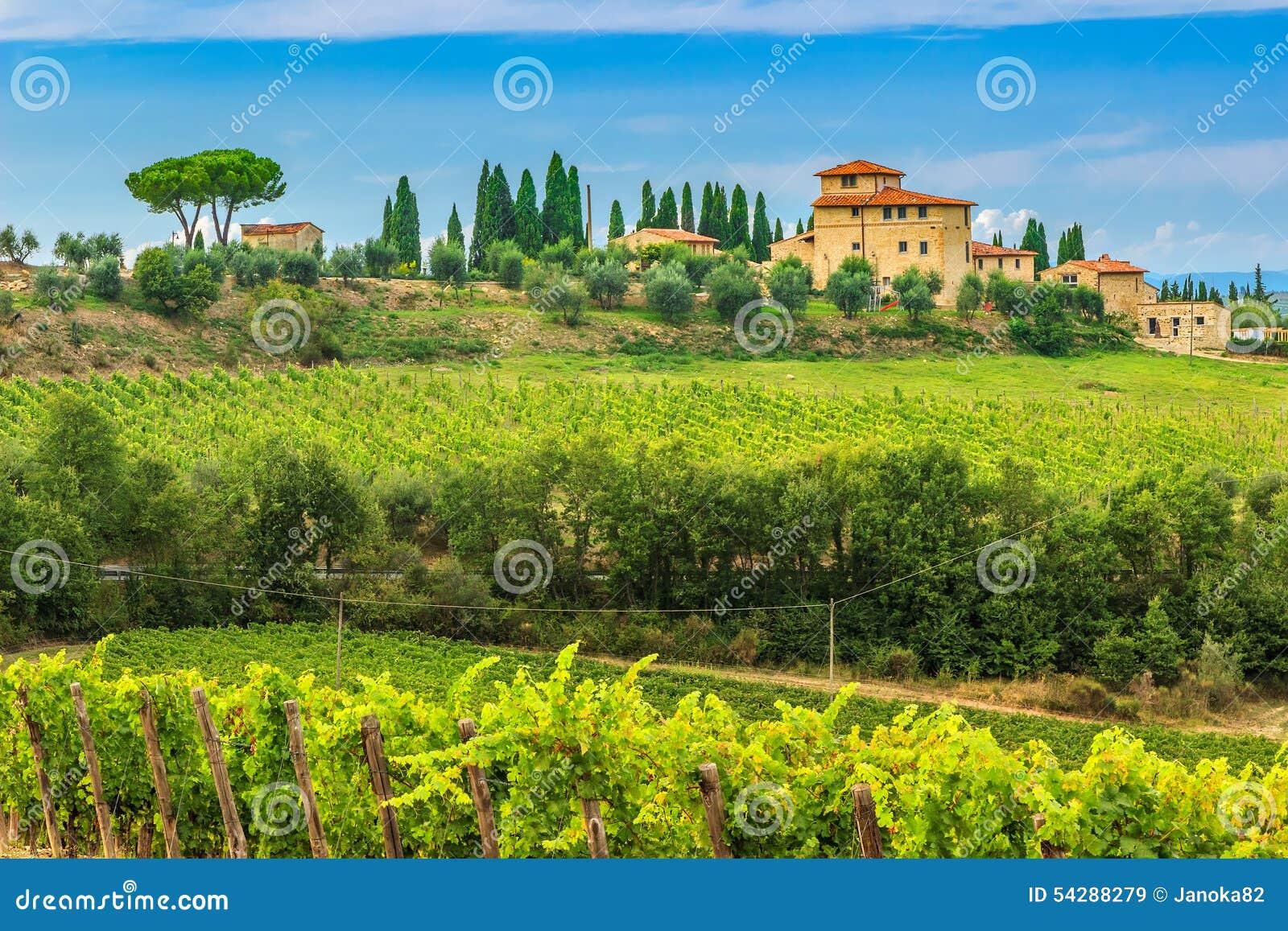 Ландшафт виноградника Chianti с каменным домом, Тосканой, Италией, Европой