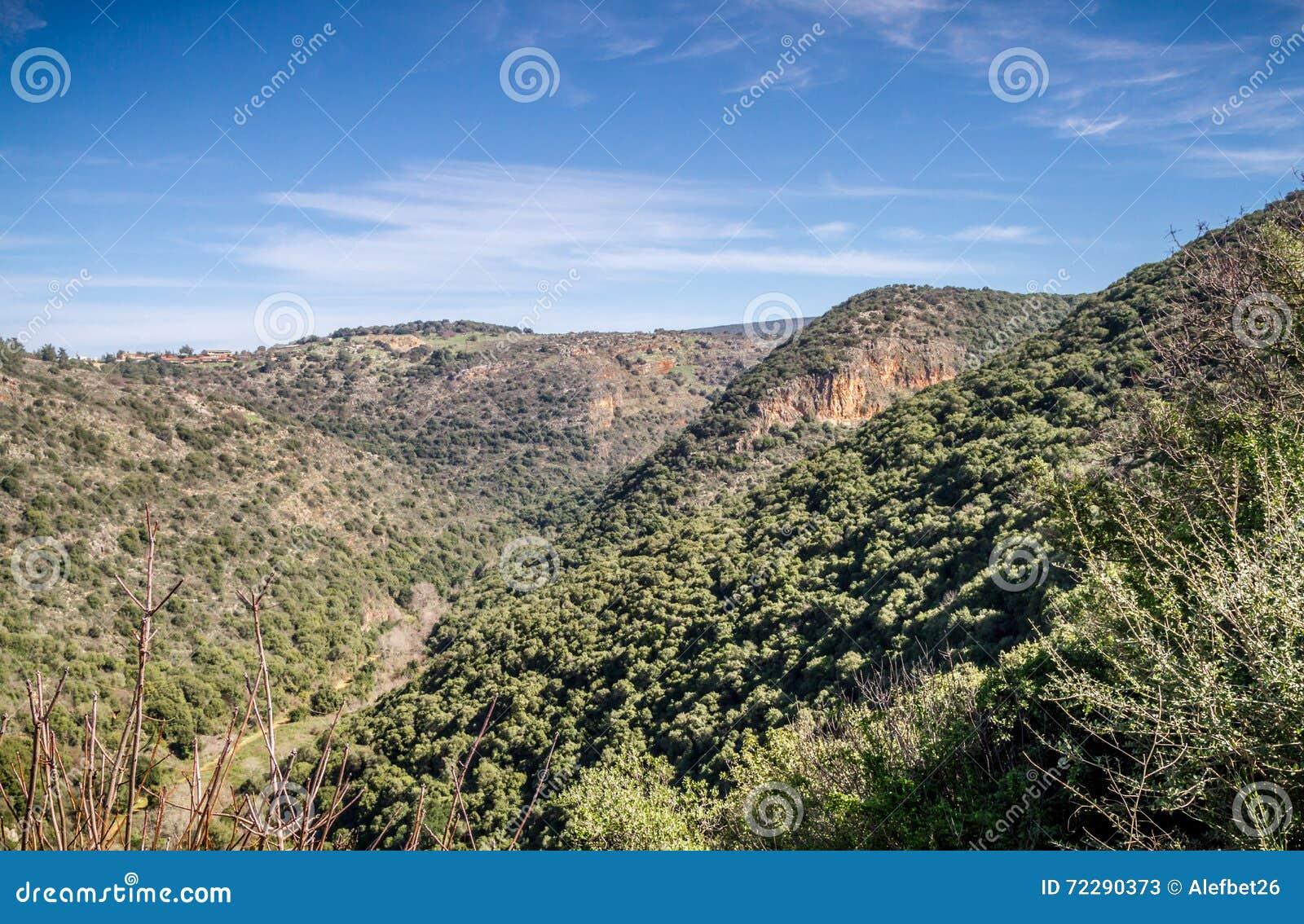 Download Ландшафт горы, верхняя Галилея в Израиле Стоковое Изображение - изображение насчитывающей святейше, гористо: 72290373