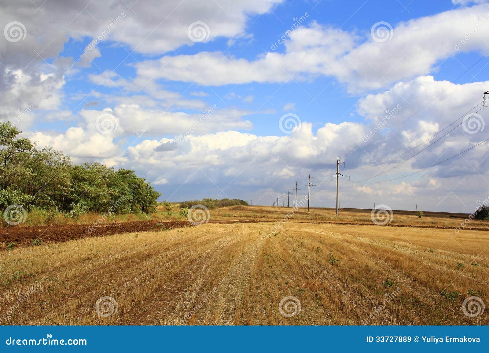 Ландшафт лета с полем и небом