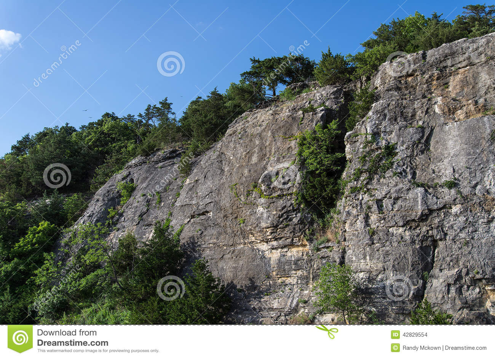 Ландшафт скал и деревьев Ozark