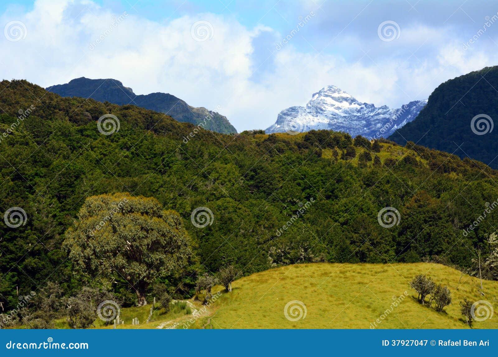 Ландшафт Glenorchy Новой Зеландии NZ NZL