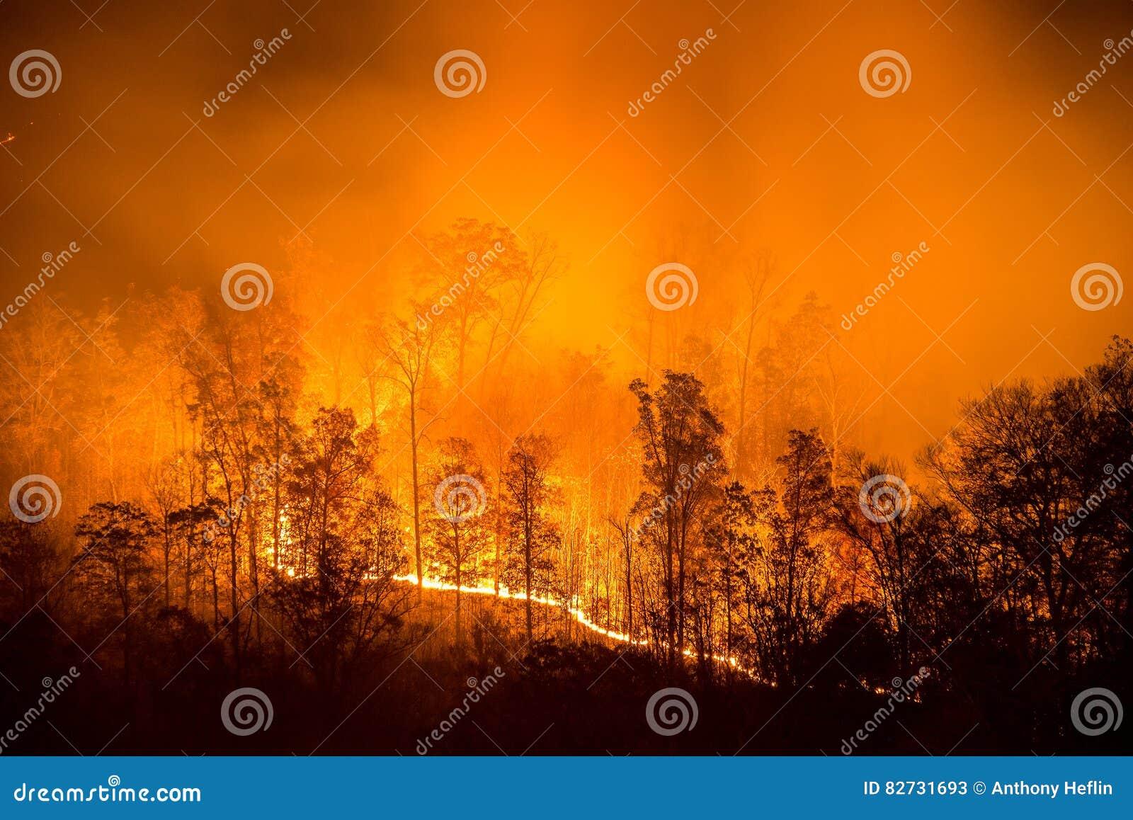 Лесной пожар, Аппалачи, сценарные