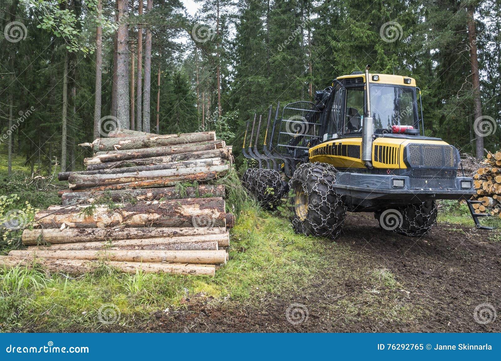 Лесохозяйство в Финляндии