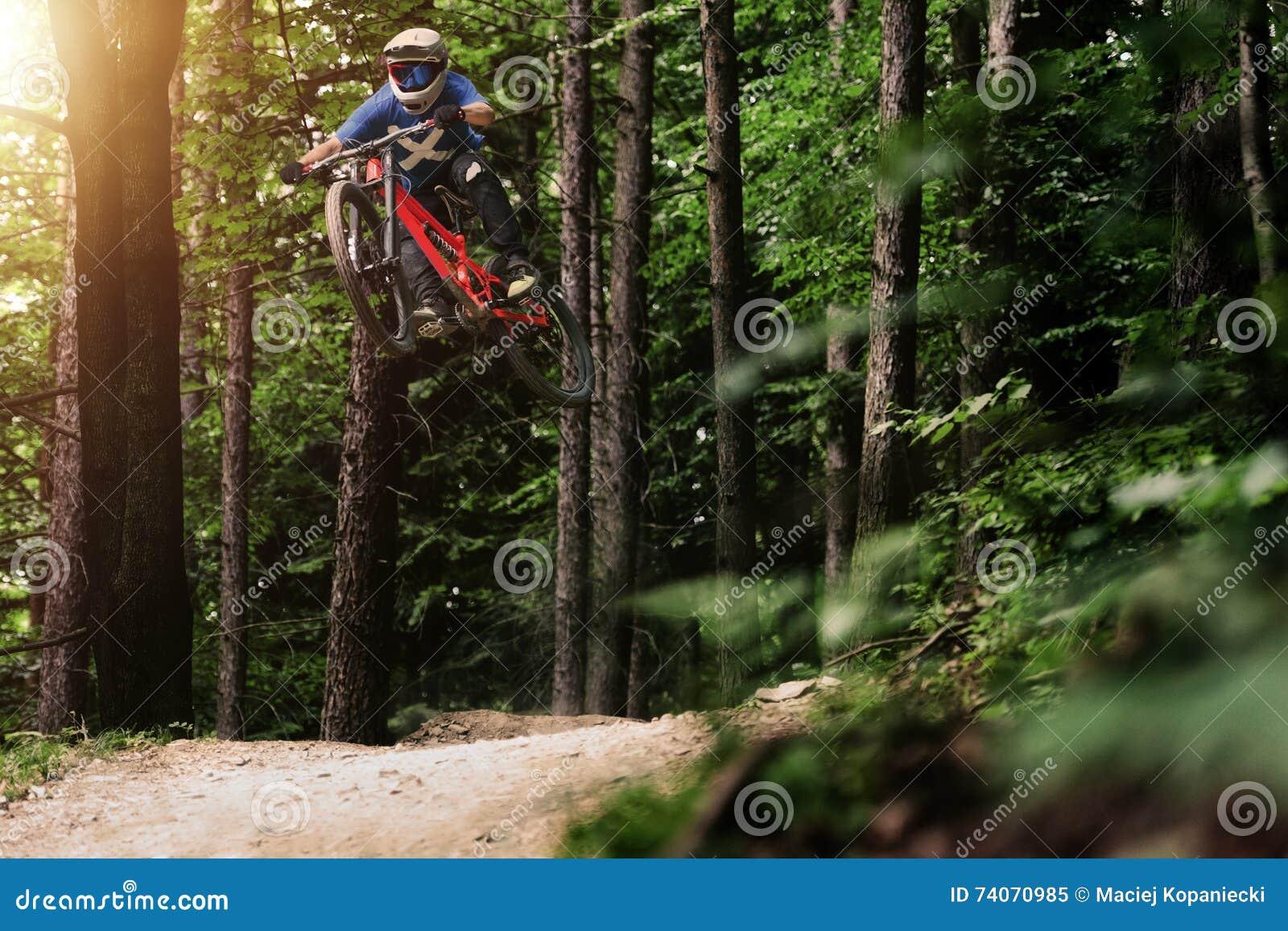Лес велосипеда Mountainbiker покатый