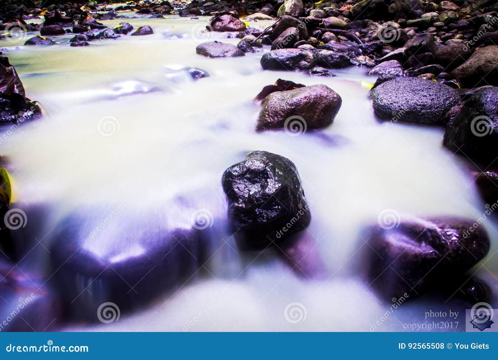 Лес реки