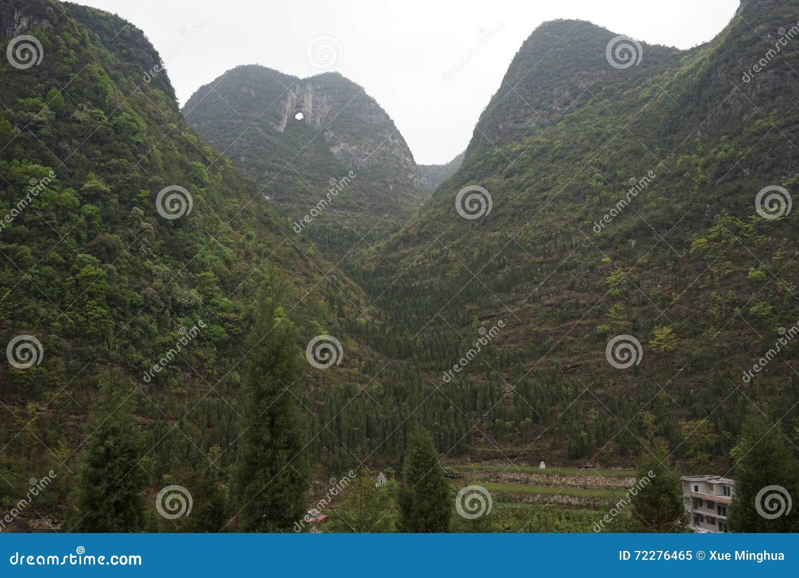 Download Лес 10 тысяч пиков стоковое изображение. изображение насчитывающей ландшафт - 72276465