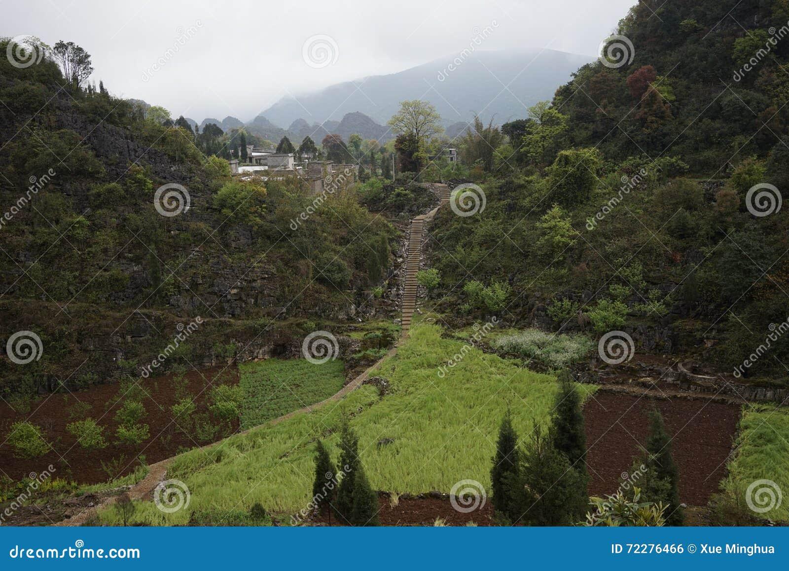 Download Лес 10 тысяч пиков стоковое фото. изображение насчитывающей первоначально - 72276466