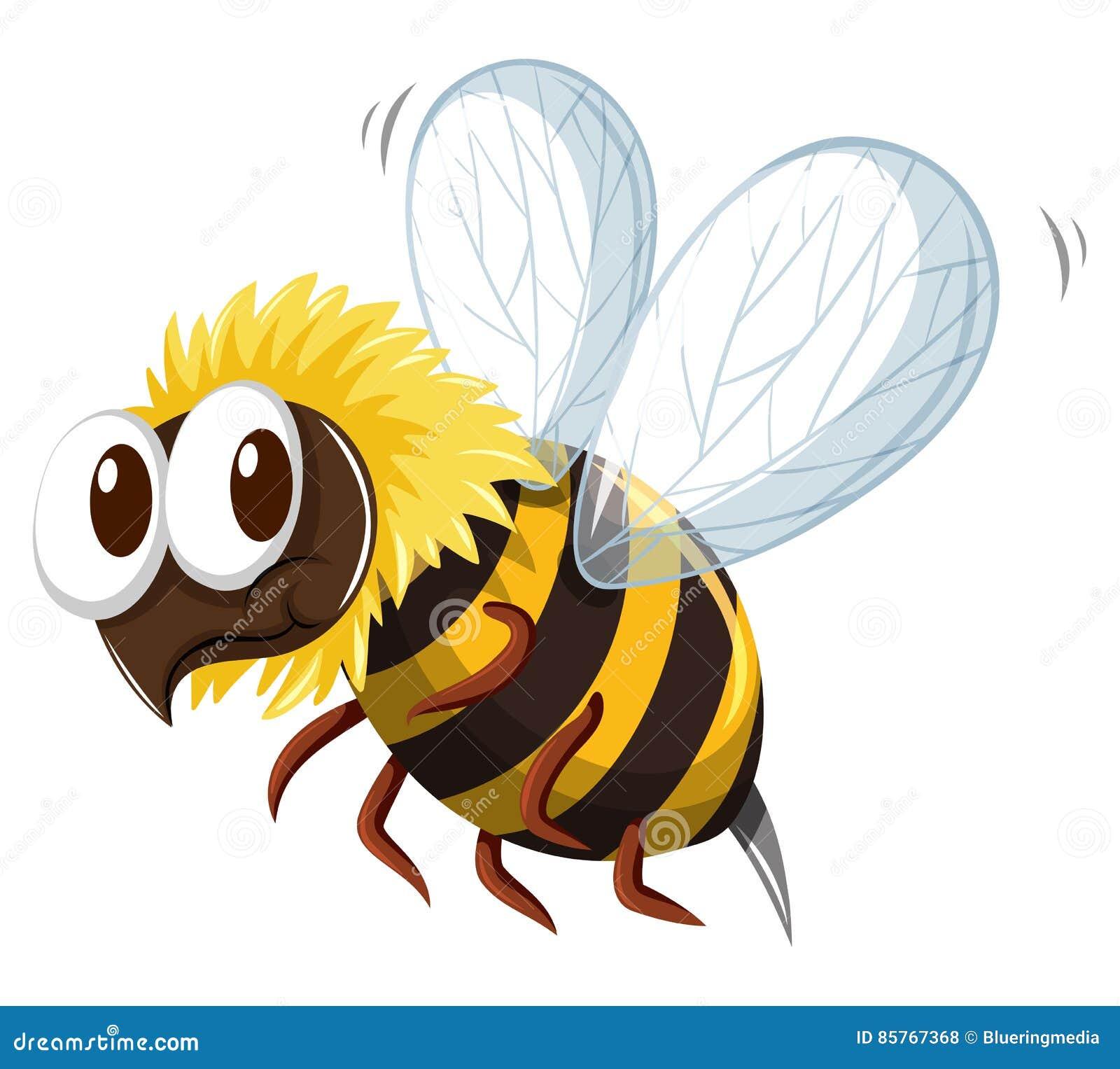 Летание пчелы на белой предпосылке