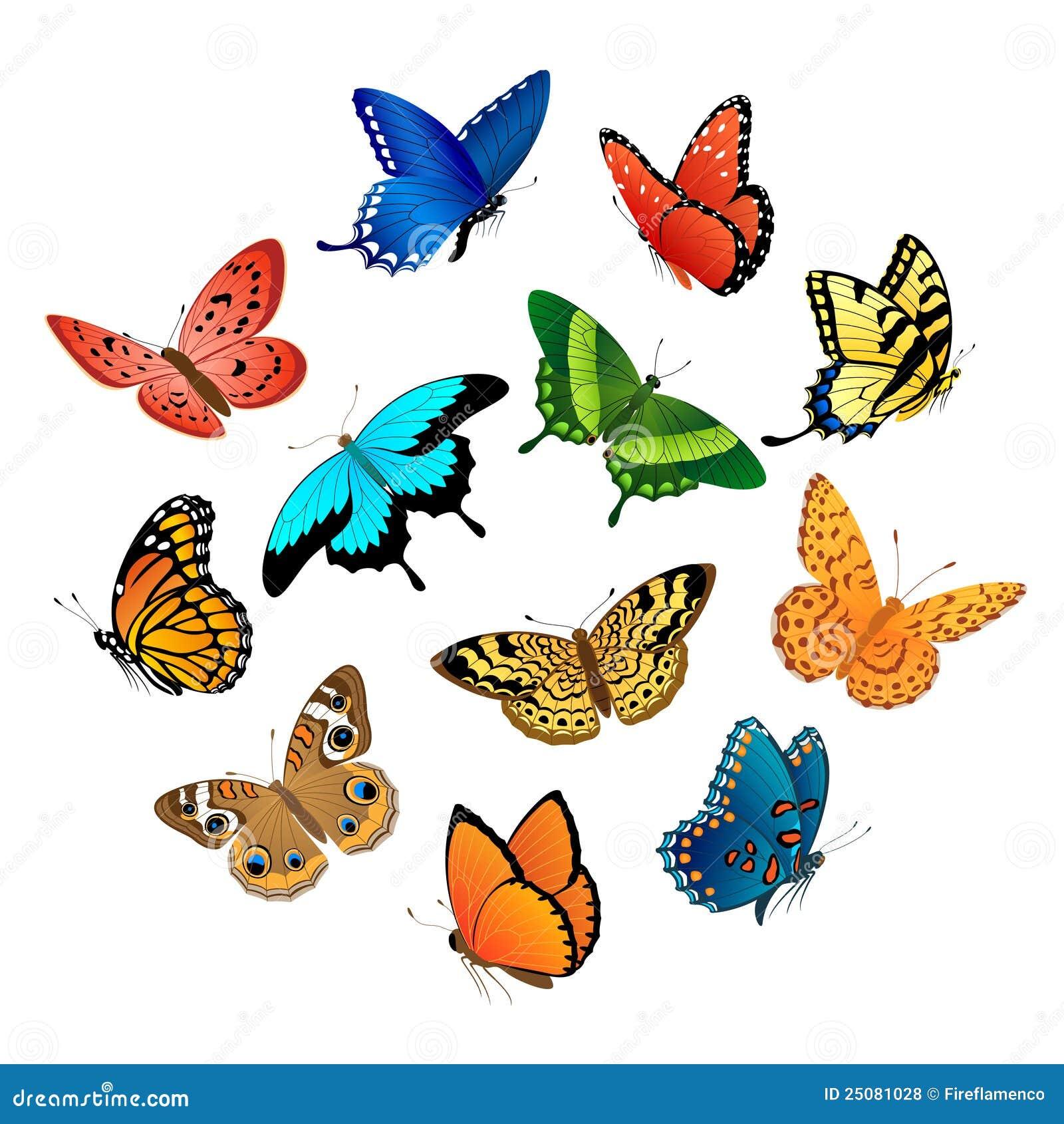 летать бабочек