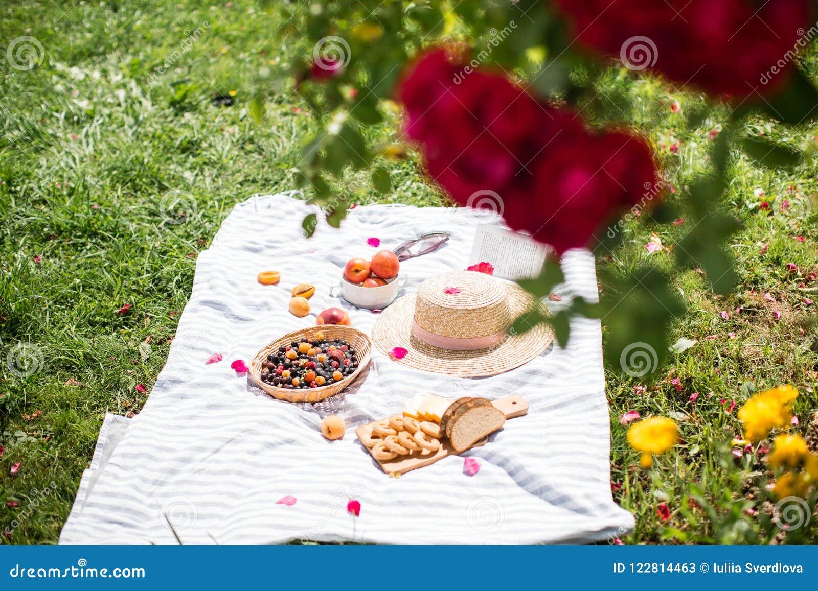 Летние каникулы в саде под красными розами