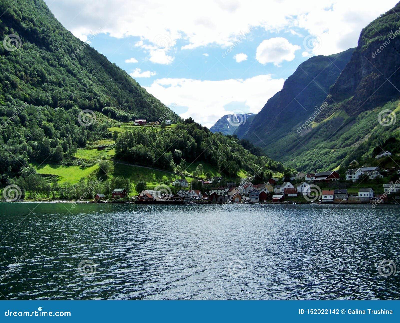 Лето Норвегии природы Вода, фьорд леса на солнечный день