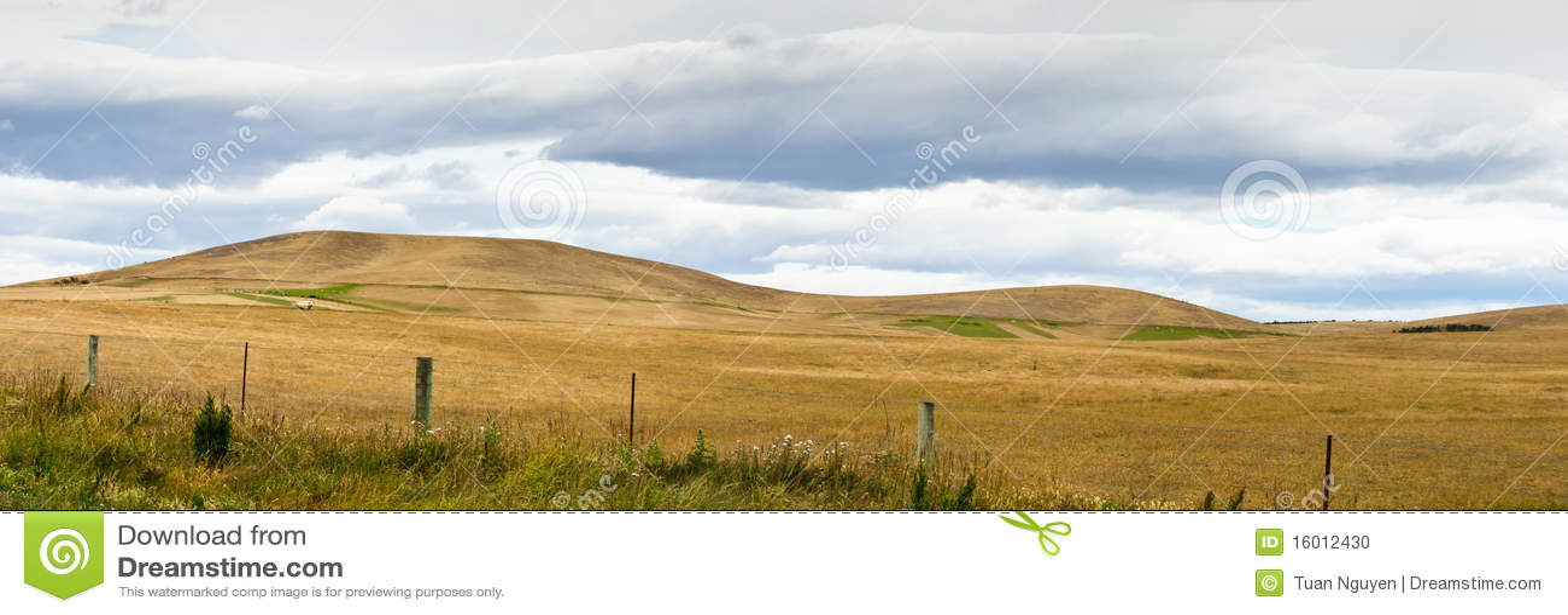 лето pasturelands жары