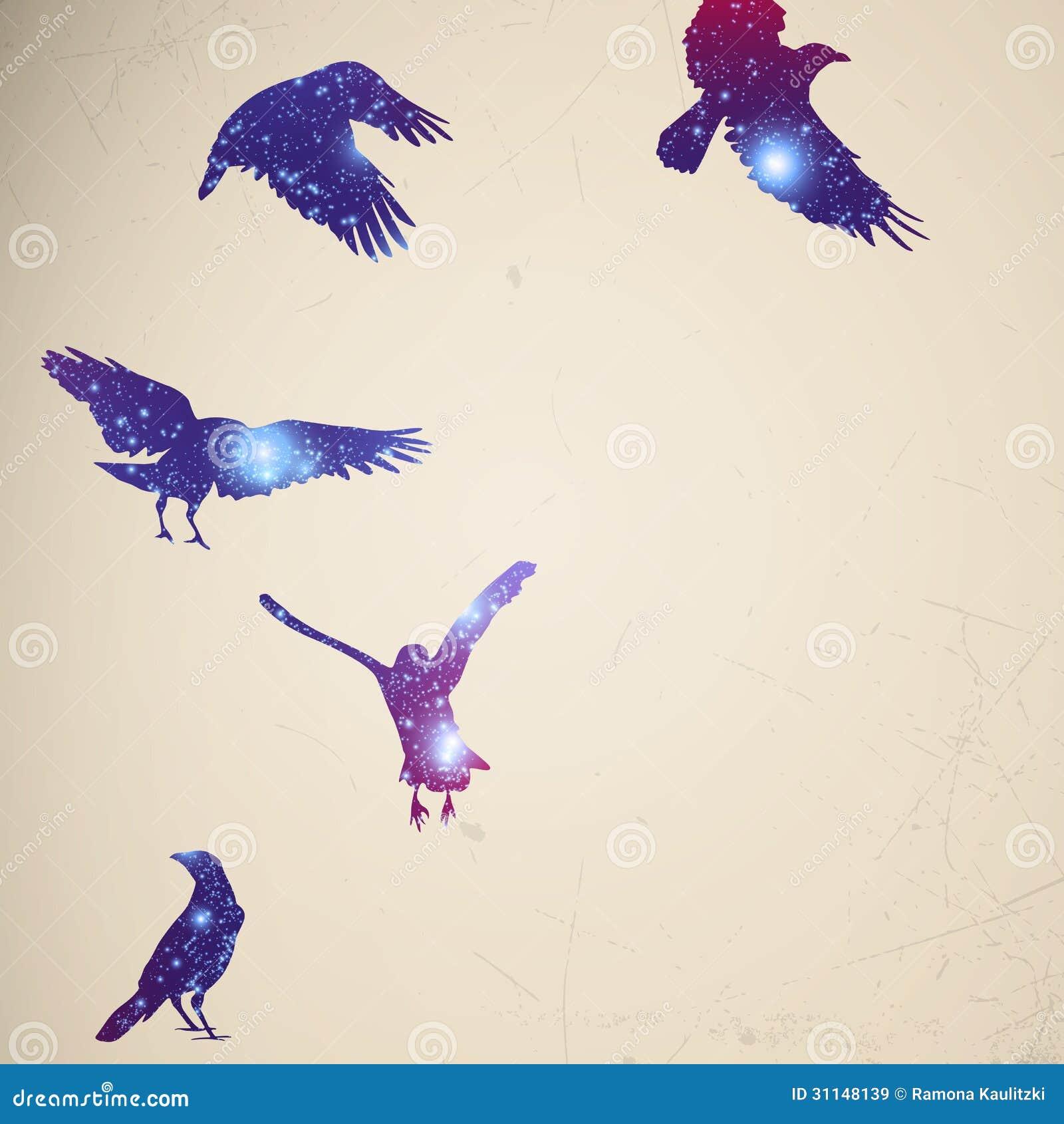фото птицы летящей