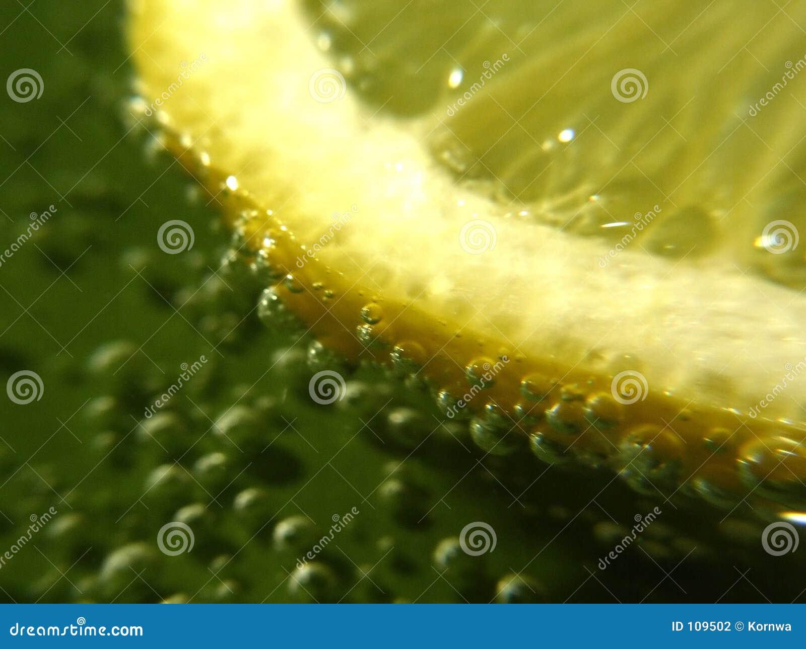 лимон принципиальной схемы