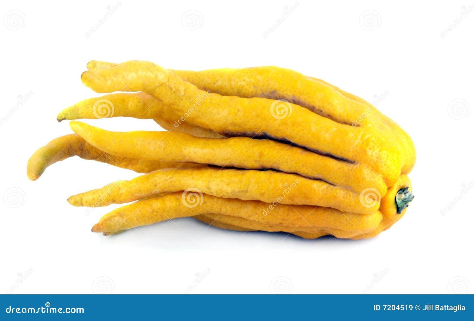 лимон руки buddhas