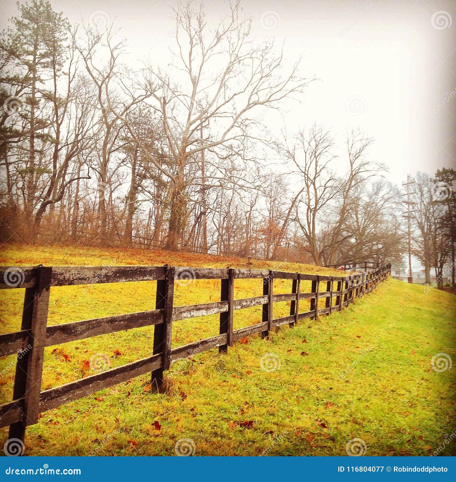Линия загородки осенью в Огайо