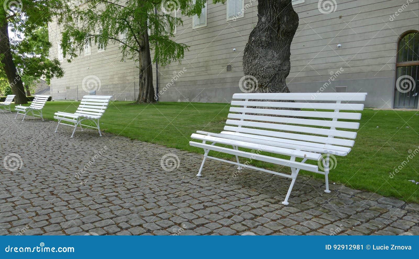 Линия пустых белых стендов в парке