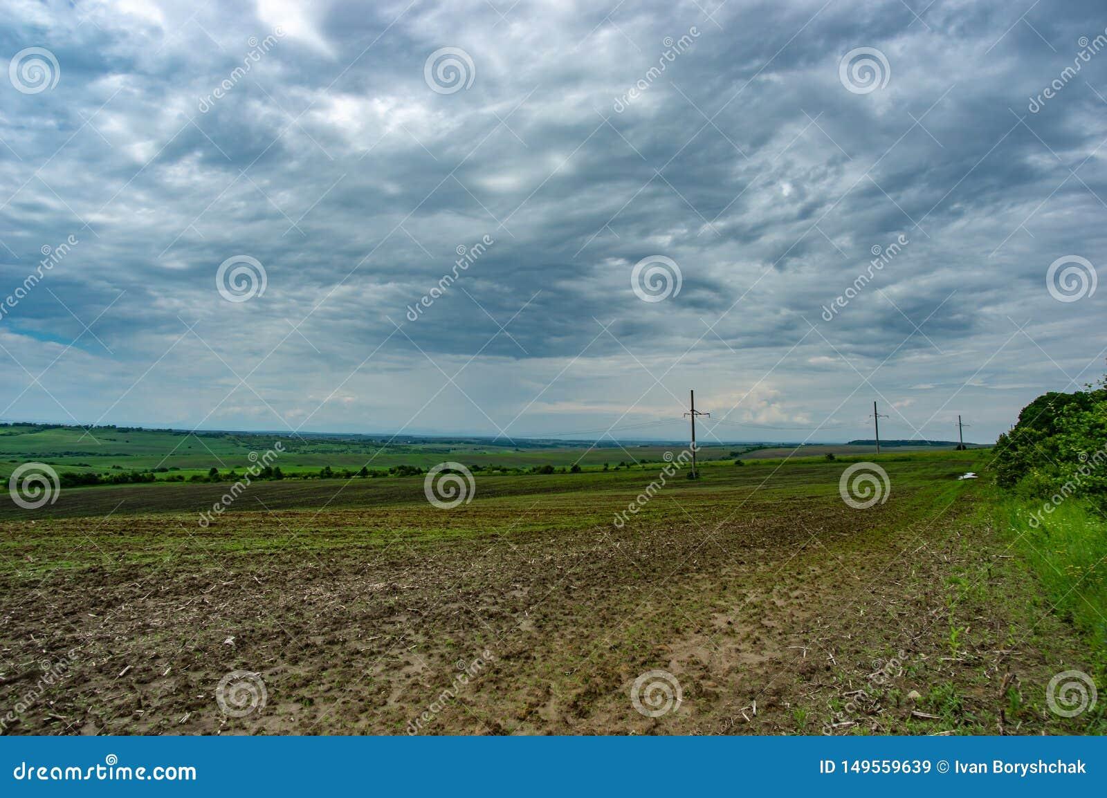 Линия электропередач в зеленом поле