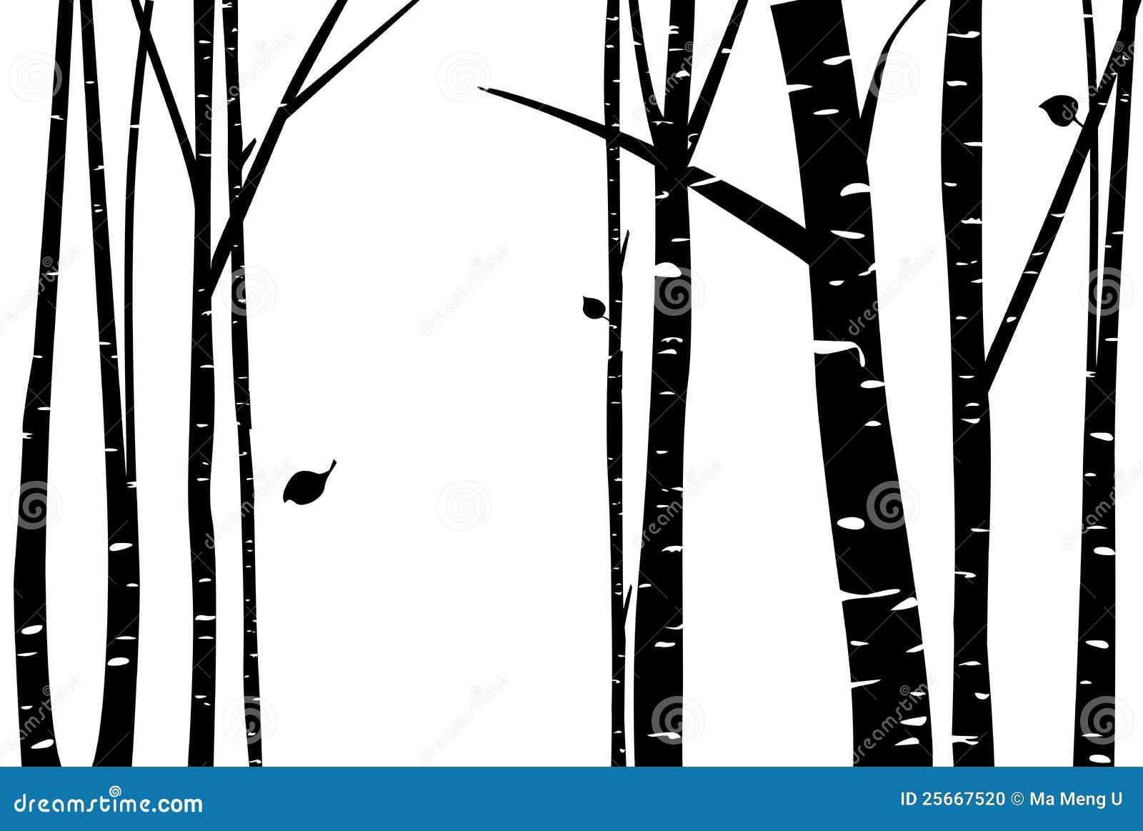 Берёза рисунок на черном
