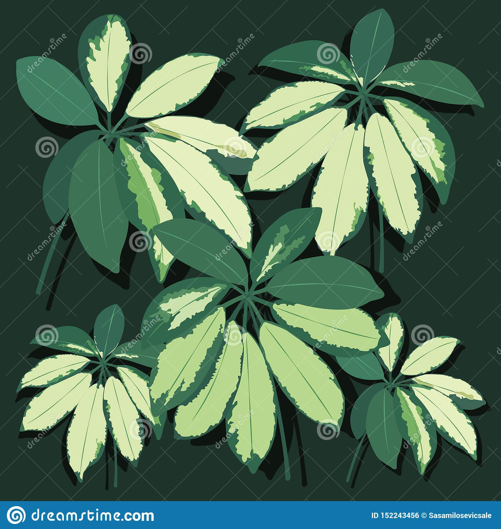 Лист вектора реалистические Тропические листья