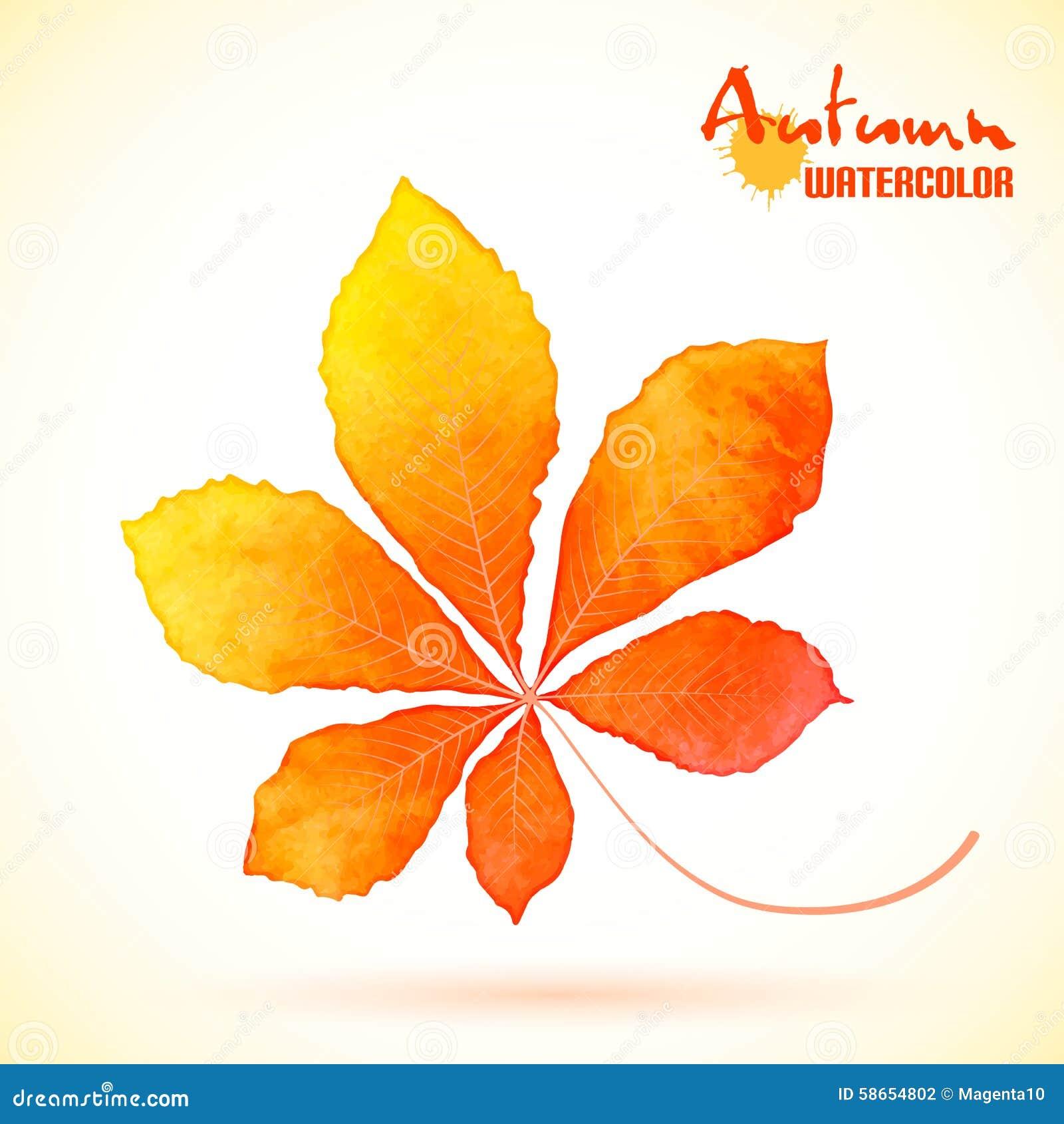листья каштана осенью фото