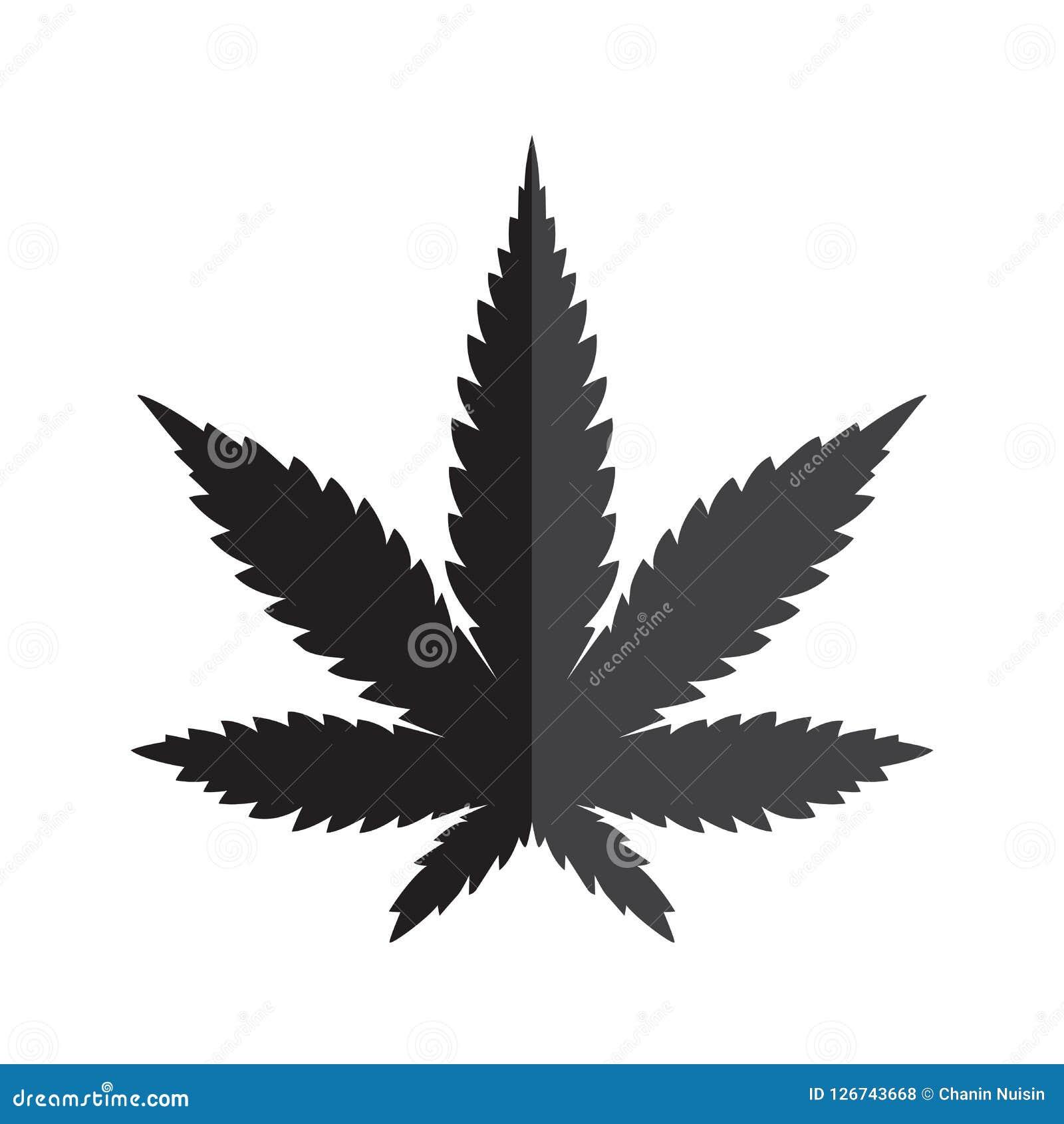 Лист конопли марихуаны полют график иллюстрации искусства зажима значка логотипа