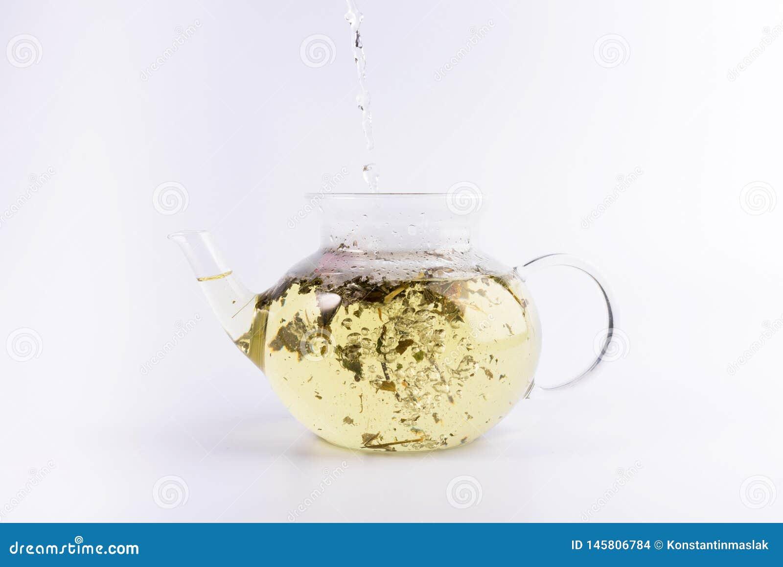 Лить горячая вода к стеклянному чайнику с травяным чаем, изолированным на белизне