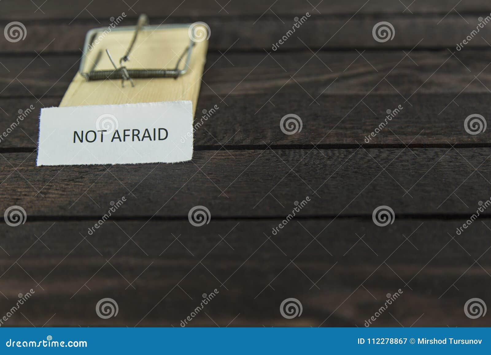 Ловушка мыши Blured деревянная с словом: Не испуганный