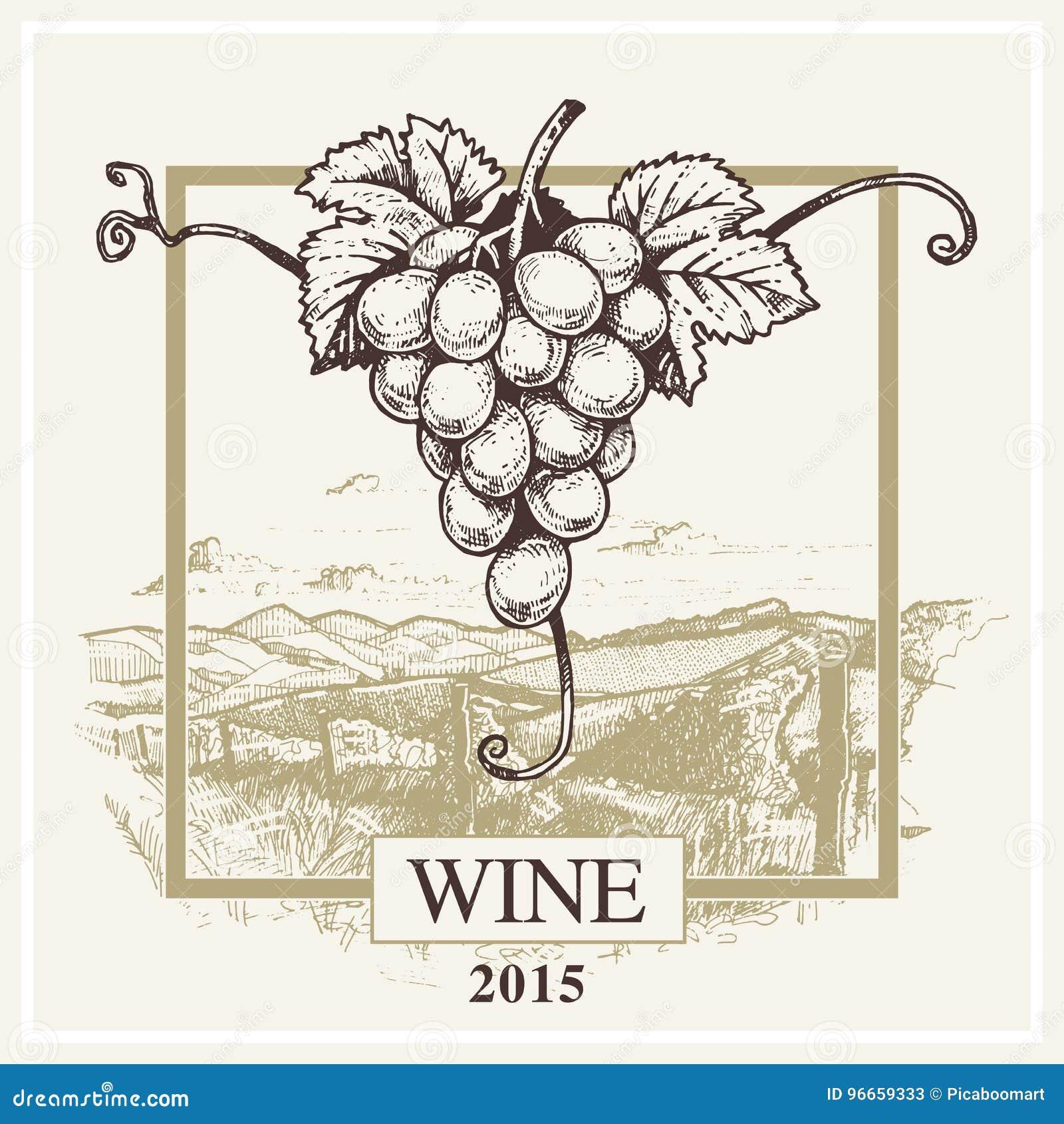 Логотип виноградины и ландшафта вектора ярлыка вина для винодельни
