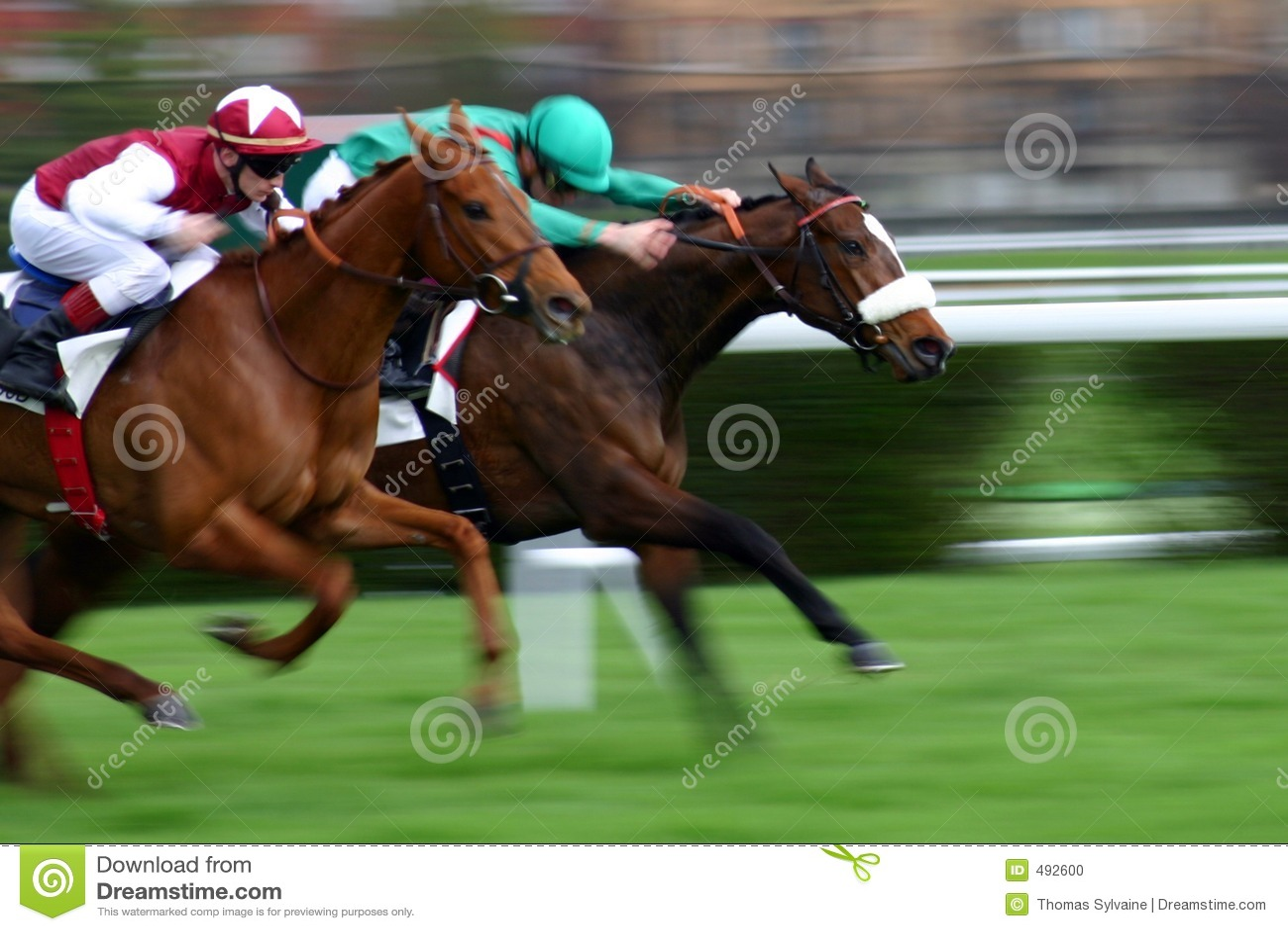лошади 2 конкуренции
