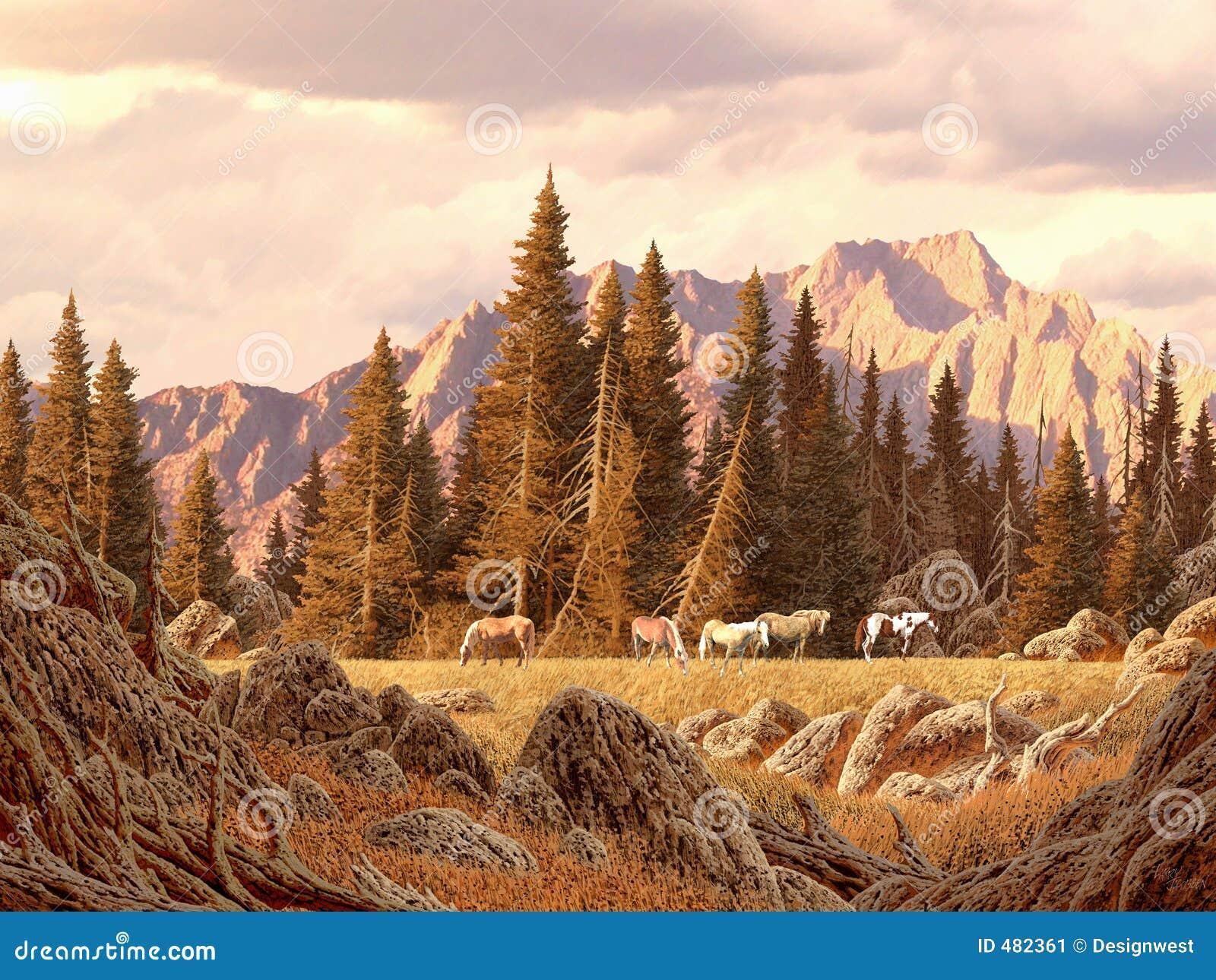 лошади rockies одичалые