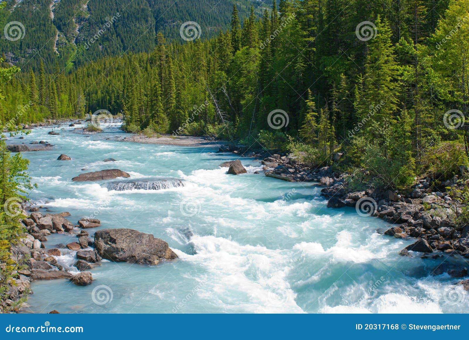лошадь пиная реку