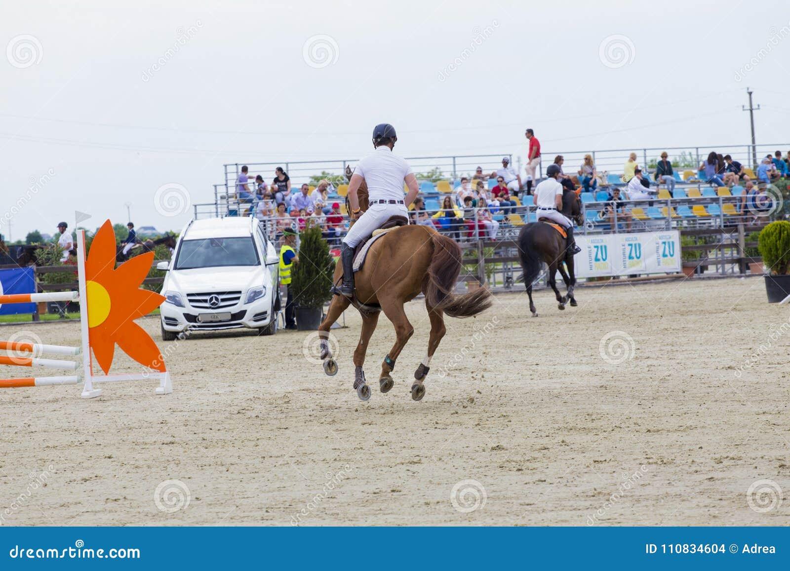 Лошадь скачет на состязание equitation