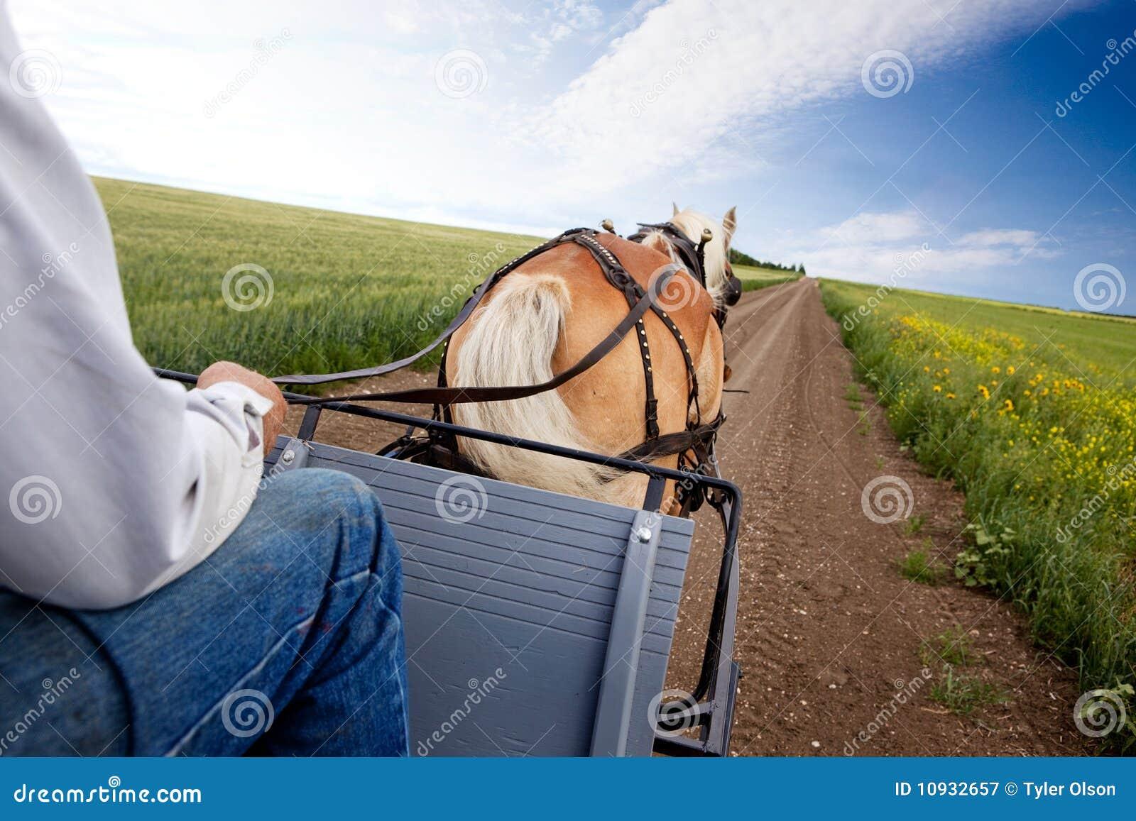 лошадь тележки